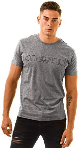 Diesel T-Shirt LOGO, Grey, Small - Jake Diesel