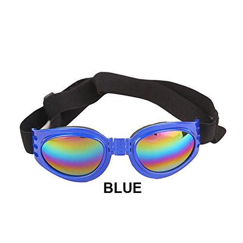 Aprigy - Sommer-Haustier Einstellbare Hundesonnenbrillen Brille Schutzbrillen Medium Large Welpen Haustier-Produkt Faltbare Brille Hundezubeh?r [Blau ]