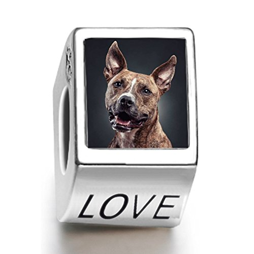 rarelove-sterling-silver-a-hungry-dog-animal-photo-love-european-charm-bead