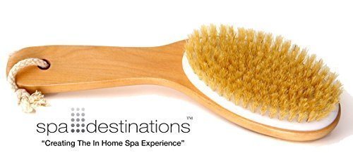 Natural Bristle Body Brush with Wooden Handle by Spa Destinations Creating The In Home Spa Experience Best Quality! Best Value!