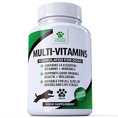 Daily Multivitamin Supplement fo...