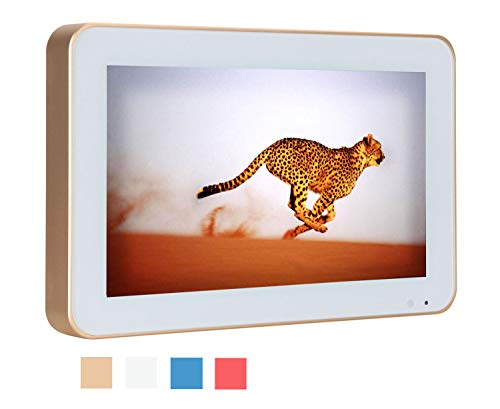 Soulaca 10.6inch Stylish Bathroom IP66 Waterproof Gold Frame Mini LED TV HD Ready with Freeview(TV/DC/HDMI)