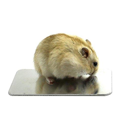 Purebesi Kühlbrett für Haustiere, Kühlkörper, Hamster-Kaninchen, Zubehör für große Tiere
