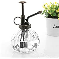 MyGift trasparente stile Vintage Decorative per piante, in vetro a coste Mister bottiglia con pompa