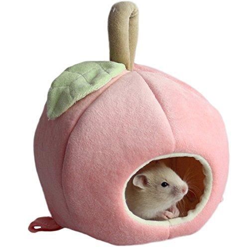 ZuckerTi neu Apfel Haustier Käfige Hütten Höhlen Hängematte Spielzeug für Kleintiere Eichhörnchen Chinchilla Meerschweinchen Ratte Mäuse Hamster Hase Kanichen