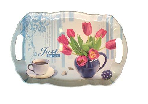 Ducomi have a break - vassoi plastica rettangolare di alta qualità - ideale per colazione a letto e da portata - lavabili in lavastoviglie e utilizzabili in forno a microonde (light blue, s)