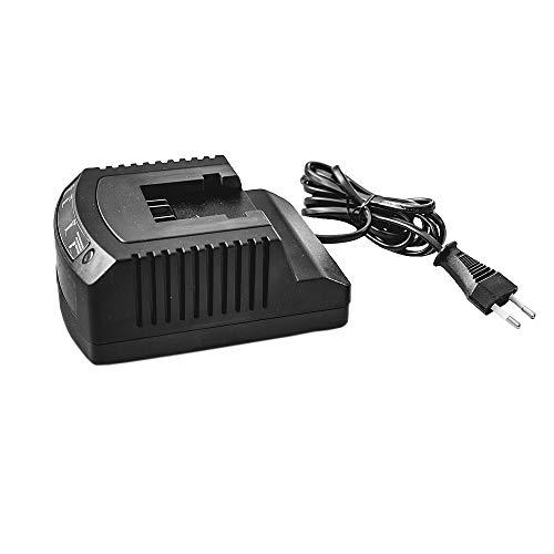 Ikra 40V Cargador de batería con indicador LED, R3-360-1A de 02