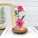 """Yazidan """"Romantic Glass Rose"""" Set.Wedding Decoration Home Furnishing Gifts Inklusive: eine rote Seidenrose, LED Lichterkette, einige abgefallene Blütenblätter, eine Glasflasche, EIN Holzsockel"""
