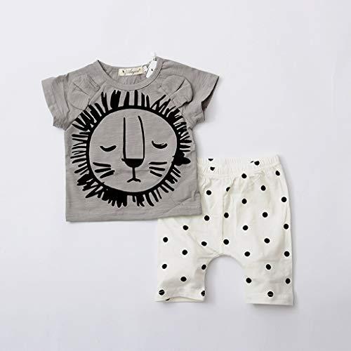 Janly_Top Baby Set,Janly Kleinkind Boy Kid Cartoon gedruckte T-Shirt Tops Star Shorts Outfits Set (66, Grau)