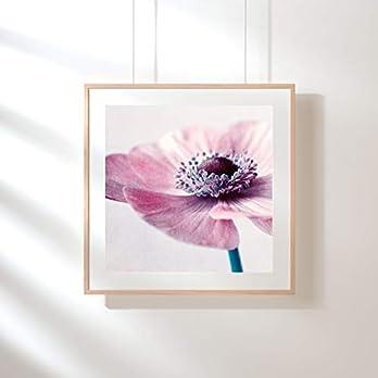 Fotografie Print Kunstdruck 12x12cm Annemone Rosa Quadrat