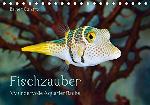 Fischzauber - Wundervolle Aquarienfische (Tischkalender 2020 DIN A5 quer)