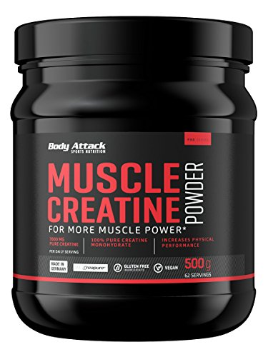 Body Attack Muscle Creatine (Creapure), 1er Pack (1 x 500 g) -