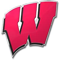 NCAA Wisconsin Badgers Die Cut Color Automobile Emblem