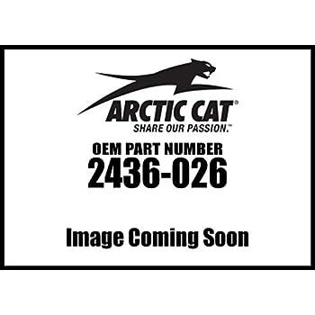 Arctic Cat Wildcat Trail...