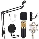 Ensemble microphone à condensateur Samje, kit micro BM-800 avec bras ajustable à bras en ciseaux avec suspension pour micro ajustable, support de filtre anti-bruit et filtre anti-pop double couche