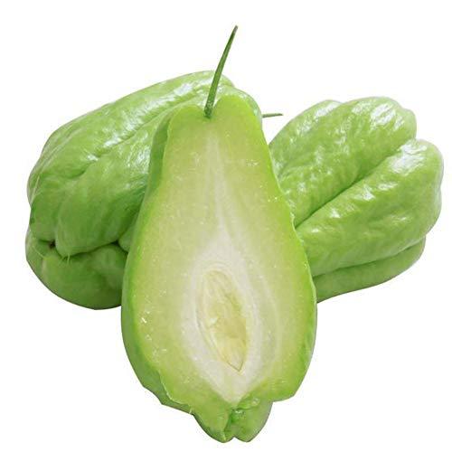 30 Stücke Chayote Samen Bonsai Gemüsesamen Hausgarten Obst Bonsai Pflanzen Samen