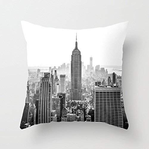 tive Pillow Case with Invisible ZippeCanvas Throw Pillow Cover foSofa and Couch 18 x 18 Pillow Cases online ()