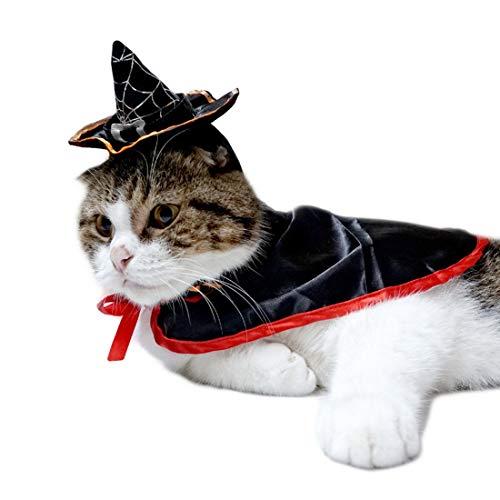 AUSWIEI Pet Halloween Zubehör Vampir Mantel Dress Up Hut Zubehör Anzug Haustier Halloween Kostüme für Hunde Katzen (Color : Cloak+hat)