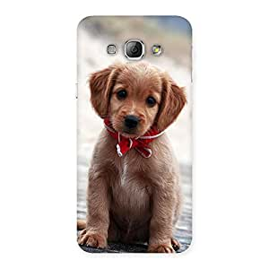 Impressive Looking Puppy Multicolor Back Case Cover for Galaxy A8