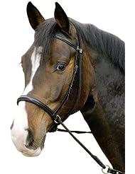 USG Bitless Bridle Connection with Noseband/ Web Reins, FulLarge, Black Leather/ Black Lined
