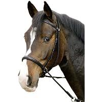 USG Bitless Bridle Connection with Noseband/Web Reins, FulLarge, Black Leather/Black Lined