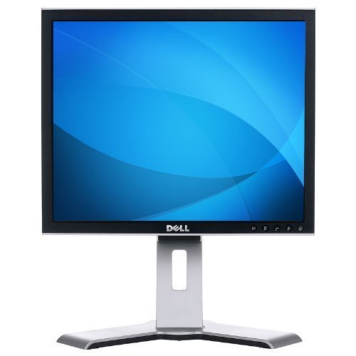 Dell 1908FP Swivel 19
