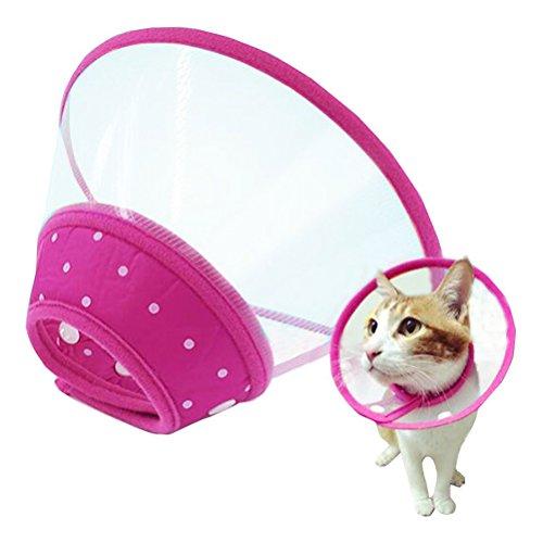 klar Kegel Erholung E-Kragen weiche Kante für kleine Hunde Katzen - Größe L (Rose Red) ()