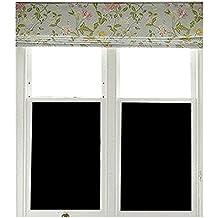 film occultant fen tre. Black Bedroom Furniture Sets. Home Design Ideas