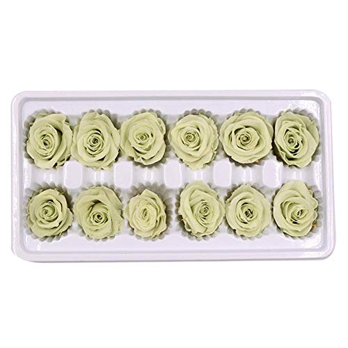 Wovemster 12 fiori finti, 3-4cm eterni rose fresche fiori, artificiali deco finto teste di plastica sposa san valentino matrimonio bouquet per la casa giardino festa composizione(verde chiaro)