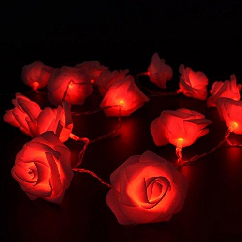 20er LED Rosen Lichterkette batteriebetrieben(Rot)