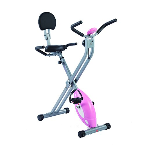 Sunny Health & Fitness Recumbent Bike Klapp-Heimtrainer