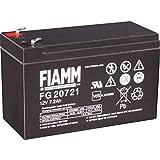 FIAMM FG20721 batteria UPS 7,2 Ah 12 V