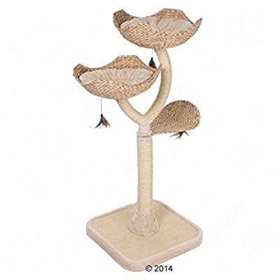 Cat Tree Flower beds chic sisal wrapped pillars scratch mat from Zooplus