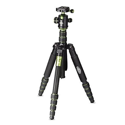 Rangers Professionelle Kohlenstoff-Faser-Stativ & Mono-pod + Kugelkopf für DSLR (Canon, Nikon, Pentax, Sony, Leica, Fuji, Lumix, Olympus) Q666-C