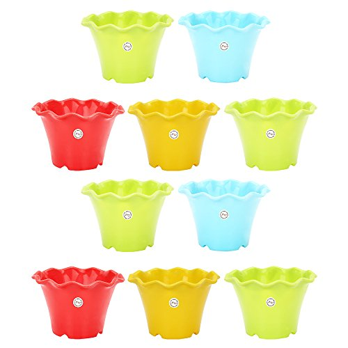 Gardening Flowering Pot 3-inch Unique Style Round Cut and Colourful (Pack of...