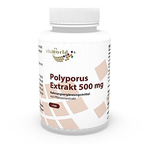 Vita World Polyporus Extrakt 500mg 100 Kapseln Apotheken Herstellung