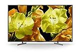 Abbildung Sony KD-43XG8196 108 cm (Fernseher,400 Hz)