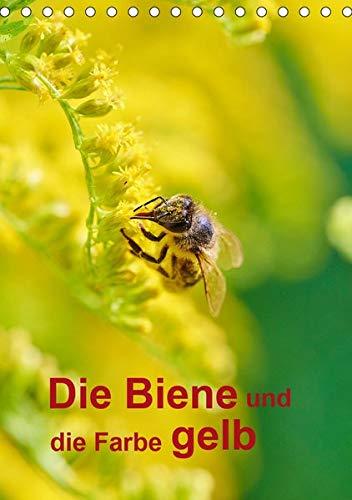 Die Biene und die Farbe gelb (Tischkalender 2020 DIN A5 hoch): Ein Jahresplaner besonders für Imker (Planer, 14 Seiten ) (CALVENDO Tiere)
