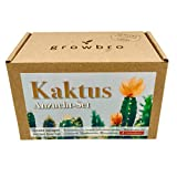 growbro Kaktus, Kakteen Mischung, Anzuchtset inkl. Sprühflasche, Geburtstagsgeschenk, Sukkulenten, Geschenke für Frauen & Männer, Gastgeschenk, Zimmerpflanzen, Cactus