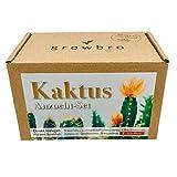 growbro Kaktus, Kakteen Mischung, Anzuchtset inkl. Sprühflasche,...