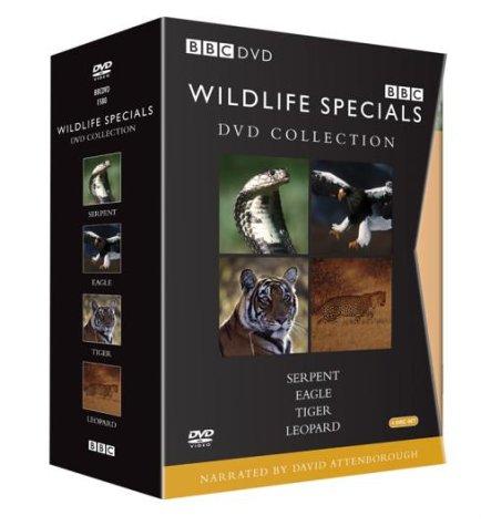 Wildlife Special