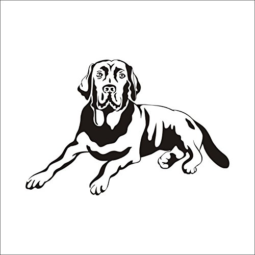 Tierdozil Niedliche Hundeball-aufkleber Wasserdichter Pvc-aufkleber 65cm X 43cm