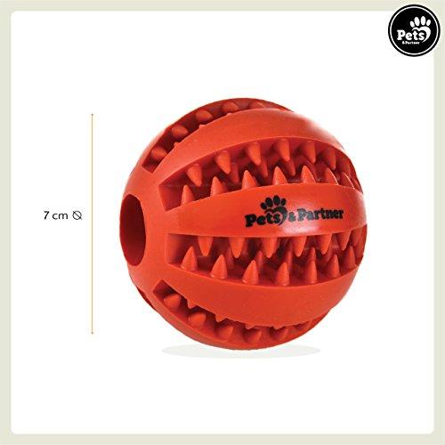 Pets&Partner® Hundespielzeug Leckerlie Ball in verschi… | 04250867586650