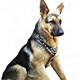 Hundegeschirr, Leder, gepolstert, hochwertig, für mittelgroße bis große Hunde