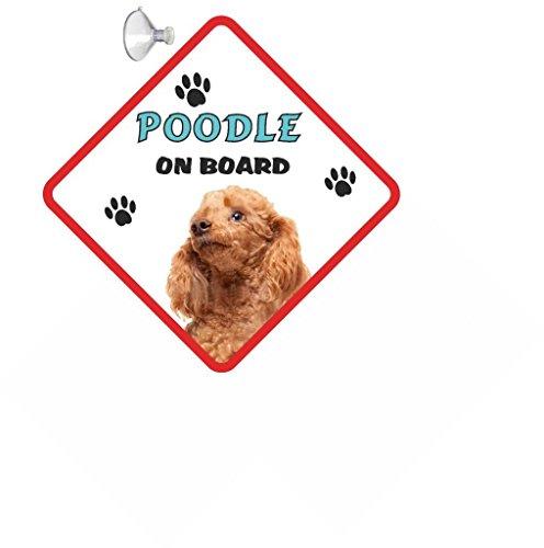 Pudel (Spielzeug apricot) Hund zum Aufhängen AUTO Schild mit Gummi Sucker 191 -