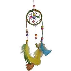 Multicolor Mini Wall Hanging Dreamcatcher