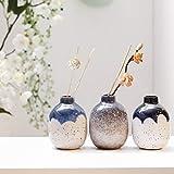 TERESA'S COLLECTIONS Ensemble de Mini Vases en Céramique pour Fleurs,Bouteilles d'arôme en Porcelaine pour Décor à la Main (H10cm,Paquet de 3)...