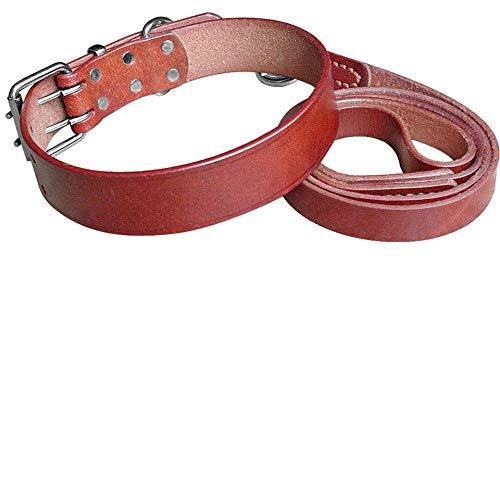 Local Makes A Comeback Actividad y entretenimiento Bebé 2 Paquetes Correas de seguridad ajustables para mascotas perros Cinturón de seguridad Arnés de cinturón de seguridad Azul