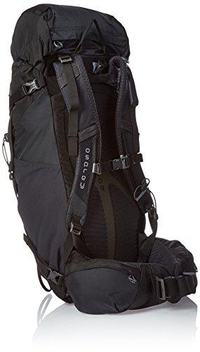 Osprey Kestrel 28 Trekkingrucksack M/L Ash Grau