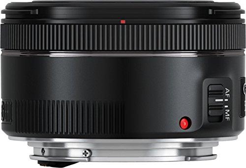 Objekt. Canon EF 50mm F/1.8_4